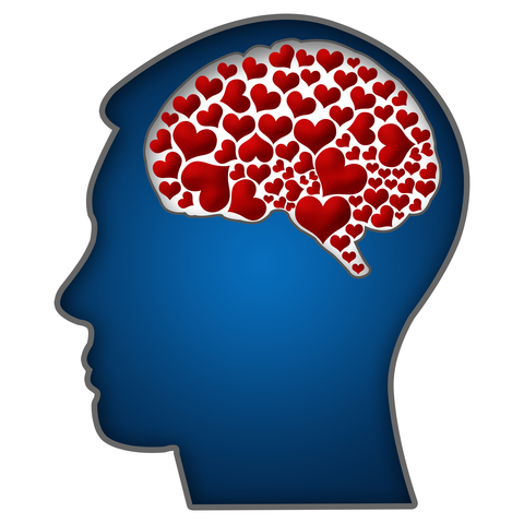 http://www.dreamstime.com/royalty-free-stock-photos-human-head-hearts-brain-sh